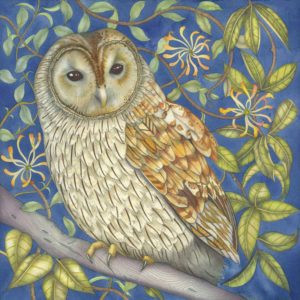 Tawny Owl in the Honeysuckle Greetings Card