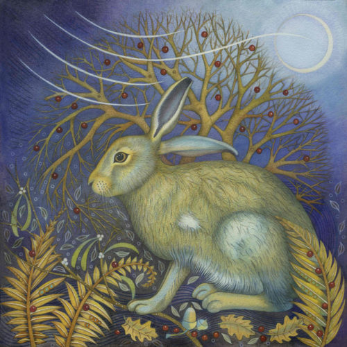 The Startled Hare Greetings Card