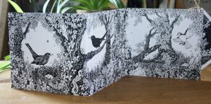 Owls and Blacbirds Concertina Card